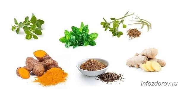 Какие травы для похудения сжигающие жир