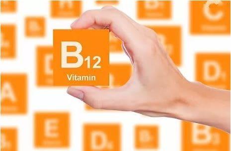 Метаболизм витамина В12 в организме