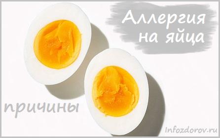 Аллергия на яйца как проявляется