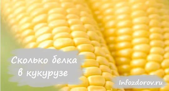 Сколько белка в кукурузе